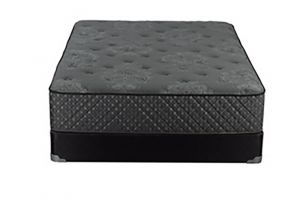 Mattress for Less Private Label Alissa Firm